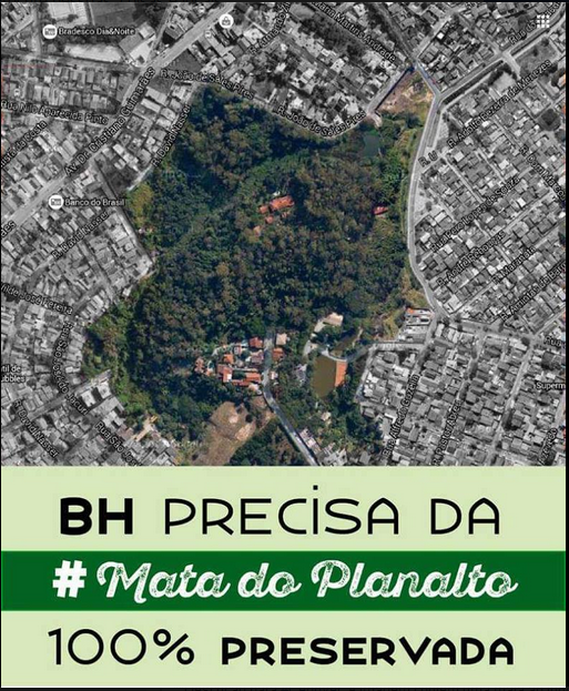 Mata do Planalto 2